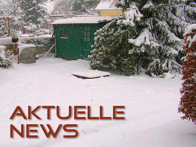 Aktuelle Blognews