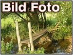 Bild oder Foto?