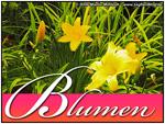 Blumen Bilder (Kunst Dekoration)