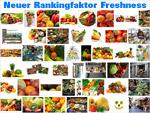 Google Freshness