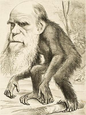 Charles Darwin (Begründer der Evolutionstheorie) als Affe