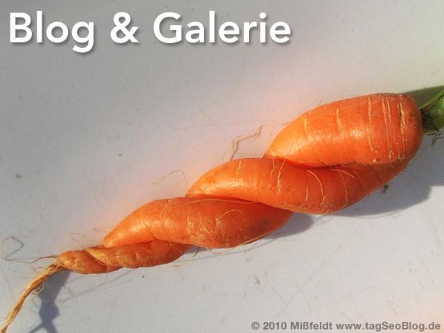 Blog und Galerie - eine Einheit