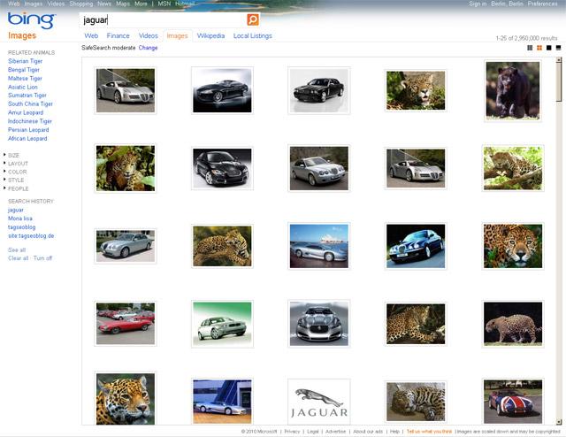 Bing Bildersuche (US-Version keyword Jaguar)
