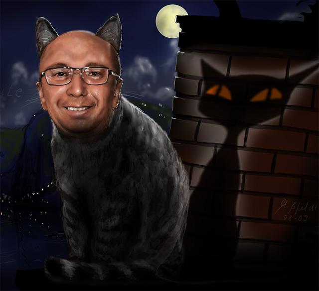 Fridaynite als Katze in lauer Sommernacht an Mittelmeerküste