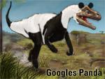 War es wirklich ein Panda?