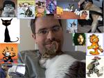 SEO Katzen Bild