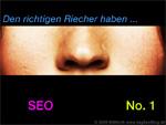 Suchmaschinenoptimierung - Lohnt sich SEO-sein?