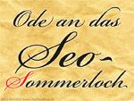 Seo-Sommerloch