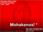 Mohakenox ist super (Bild-Experiment)