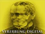 Vererbung digital (Gregor Mendel)
